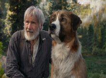 O CHAMADO DA FLORESTA - FOTO: FOX FILM